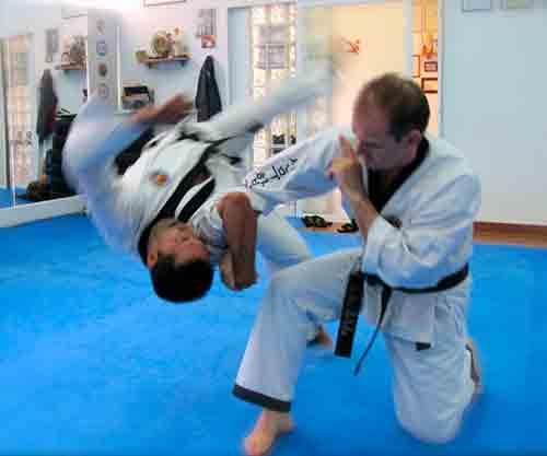 Hapkido jin jung kwan gym seul for Gimnasio zaragoza